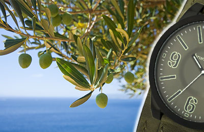 Bild zu Uhren in Oliv